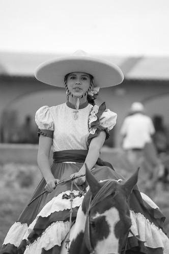 Vendimia Viñedos Azteca | by @jluisro