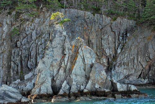 spreadeagle trinitybay wigwamrock newfoundlandandlabrabor dildoislandadventuretours