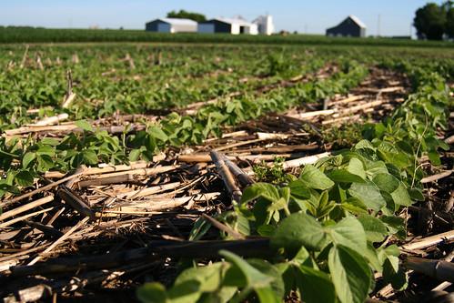 Healthy Soil in Illinois | by NRCS Soil Health