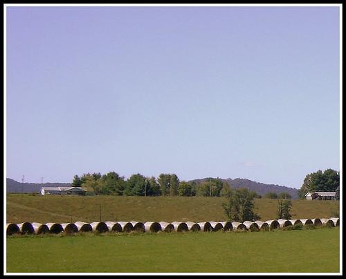 hayrolls carrollcounty keithhall fancygapva hillsvilleva