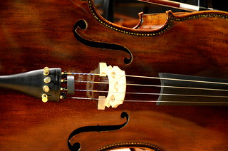 Cello Day Fall 2012   by rvictory4012