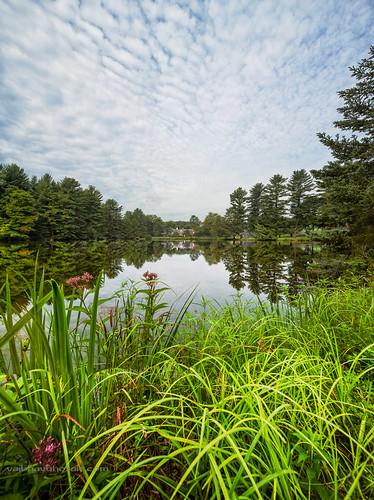panorama reflection nature pa troutlake wildlifesanctuary waynecounty canon5dmarkiii tse17mmf4l vaibhavbhosalecom dorflingersuydamdorflinger