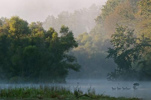 nature fog pennsylvania yorkcounty yorkpa lakeredman
