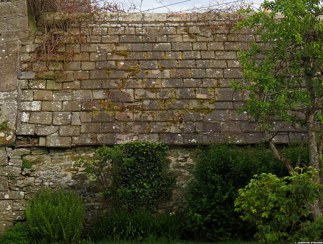 20120601_11 Mossy stone shed | Thurso, Scotland