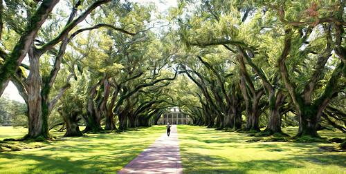 usa louisiana neworleans mansion oaks oakalleyplantation