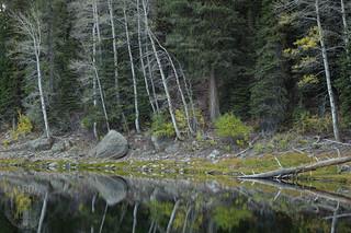 Still shore of Louie Lake