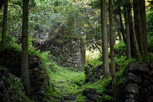 shimane japan iwami ginzan oda 石見銀山 wall ruins forest