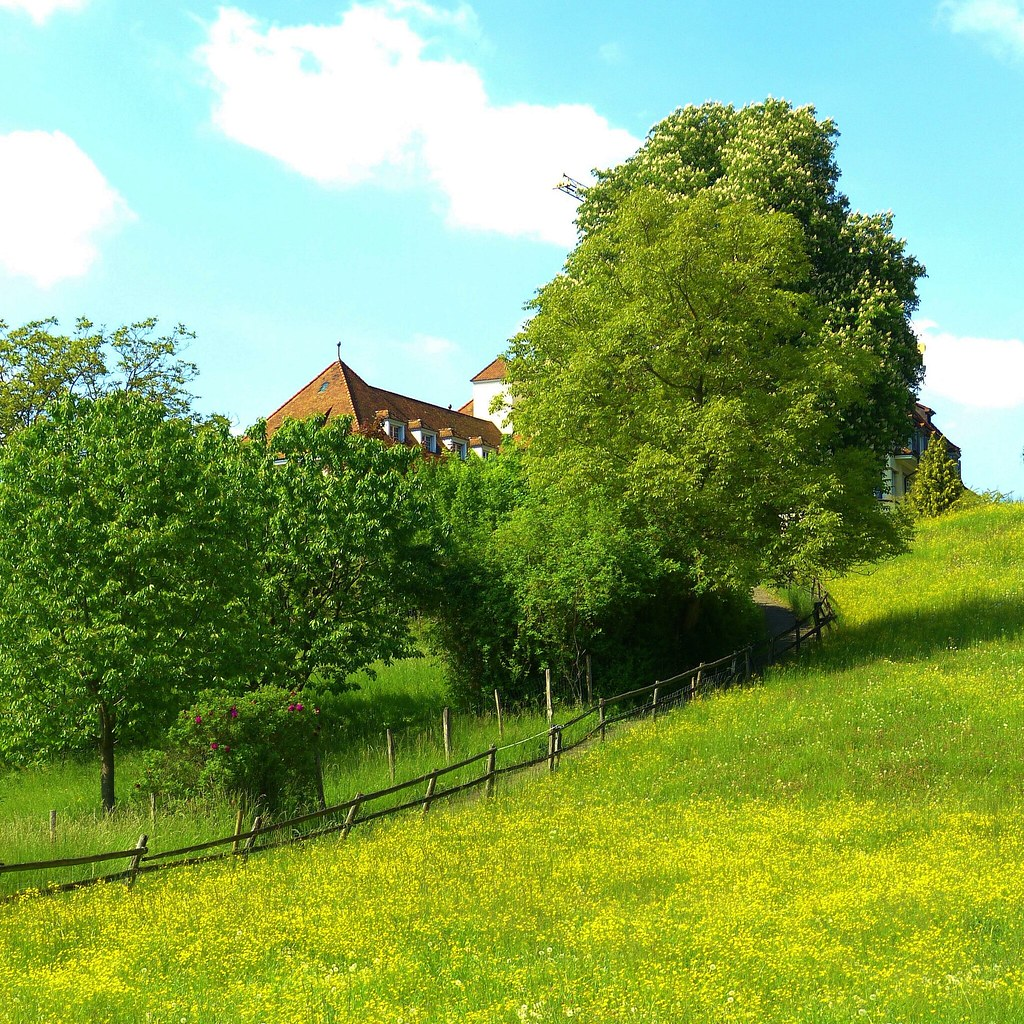Dreaming in Riehen Nr.1