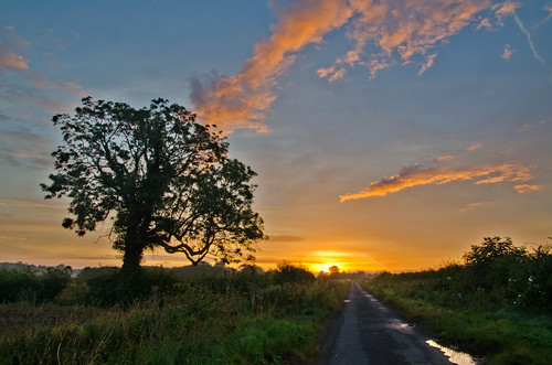summer sunrise countryside nikon countrylane snainton pd1001 d7000 pauldowning pauldowningphotography