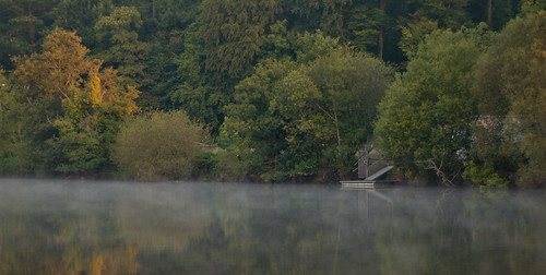 morning autumn trees ireland sunlight mist reflection fall water leaves fog forest sunrise river boats dawn early still cork jetty peaceful calm lee greens waters serene mick moor tranquil daybreak riverlee dunne mickdunne
