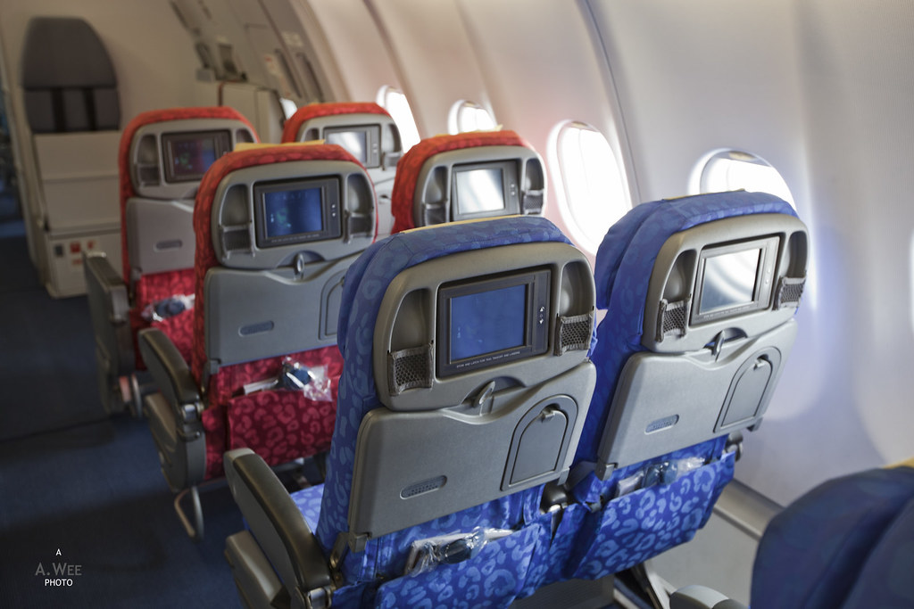 Astonishing Twin Seats By The Window Interior Cabin Of Dragonair A330 Bralicious Painted Fabric Chair Ideas Braliciousco
