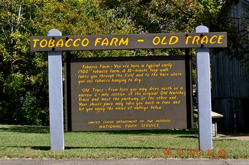 road trees signs fall leaves buildings nashville cows tennessee trace bridges crab natchez shack joes tobacco natcheztrace