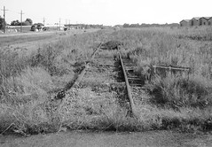 Abandoned Railroad Right-of-Way between Fannett and Winnie, Texas 1209031747BW