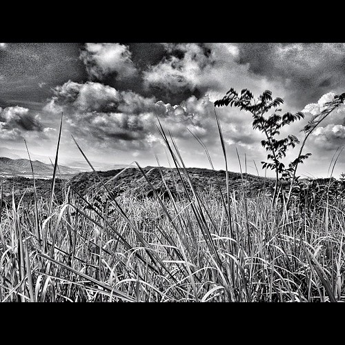 cameraphone travel blackandwhite white seascape black beach nature square landscape squareformat mobilography blackandwhitelandscape mobilephotography iphonegraphy phonegraphy iphoneography instagramapp uploaded:by=instagram iphone4s iphone4sonly