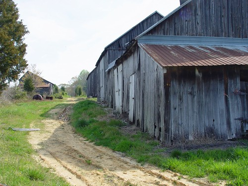 Old tobacco barns, Fairgrounds Road