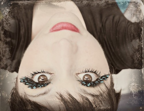 Upside Down Bluebirdy | by Heather McCready