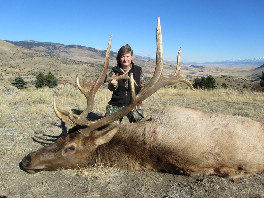 Montana Elk Hunt - Bozeman - Antlers & Anglers Worldwide