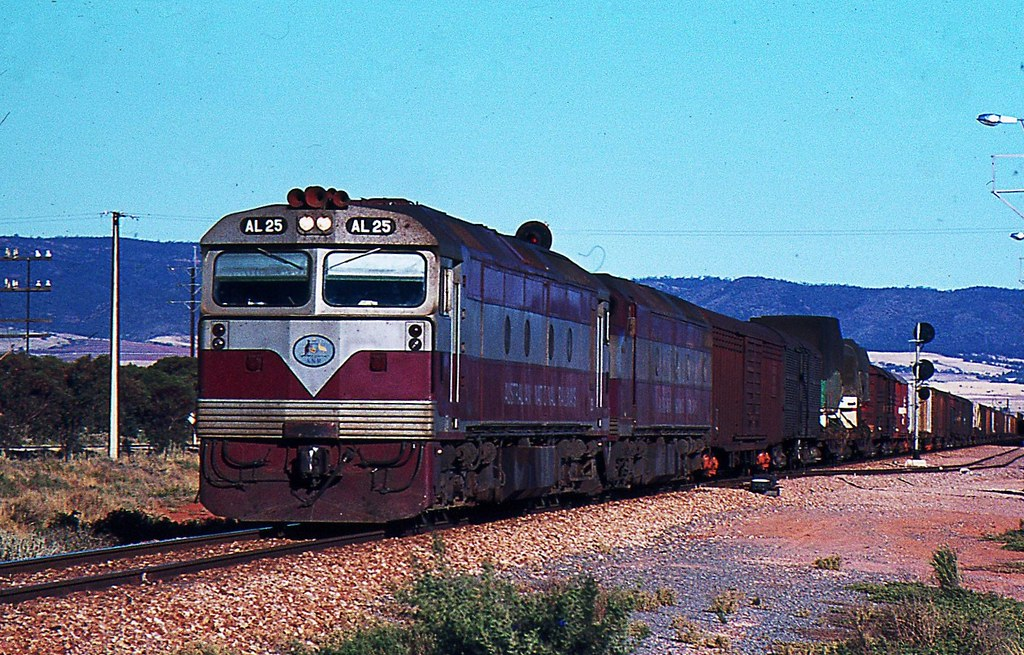 Freight to west at Coonamia South Australia by Rodney S300