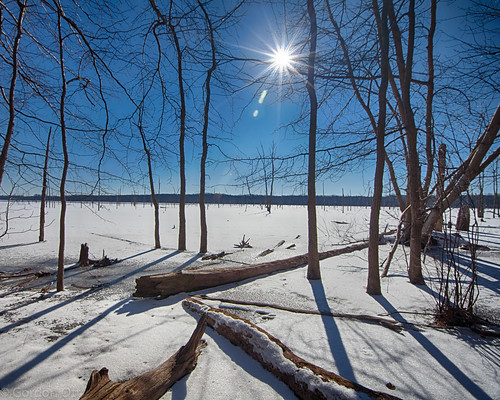 blue trees winter sky sun snow water landscape manasqaunreservoir