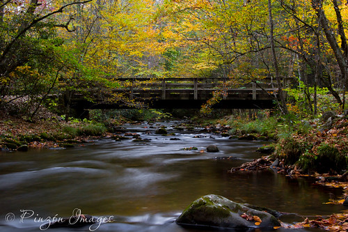 bridge autumn mountain history fall nature water creek forest stream north carolina cataloochee