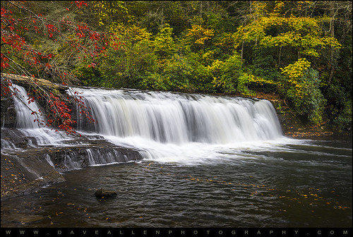 trees color fall nature water leaves forest outdoors nc woods nikon natural state vibrant northcarolina falls foliage waterfalls shutter flowing dupont appalachia silky d800 wnc dragging dupontstateforest 2470mm westernnc