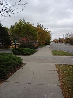 From Marion Van Loo - south of Kellogg Conference Center at MSU - October 2012