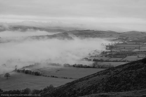 Rolling Fog