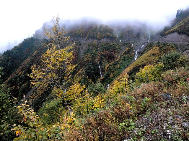 So many nearly vertical creeks in the Doğu Karadeniz Dağları by bryandkeith on flickr