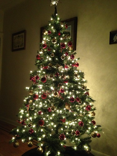 Our Christmas decorations | by Jenelle Blevins