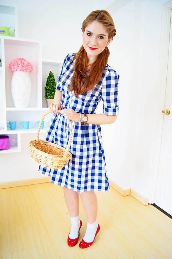 Diy Halloween Costume Dorothy From Wizard Of Oz More At M