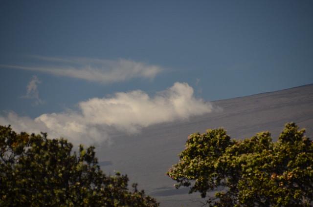 Mauna Loa (DSC_3930)