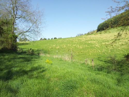 new bike river virginia path trail va draper hiwassee