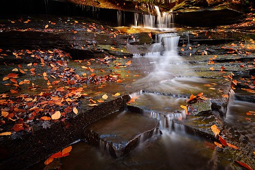 park longexposure autumn ny newyork fall leaves southwales creek season flow outdoors waterfall buffalo stream hike falls foliage trail fallenleaves westernnewyork dryleaves waterflow eastaurora cazenoviacreek countypark headon orangeleaves tributary goldenleaves emeryfalls loweremeryfalls