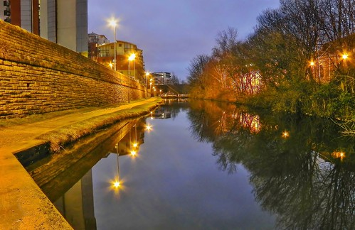 trees bw white black reflection building water night liverpool lights canal lamppost towpath