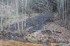 Drainage into South Fork Pound