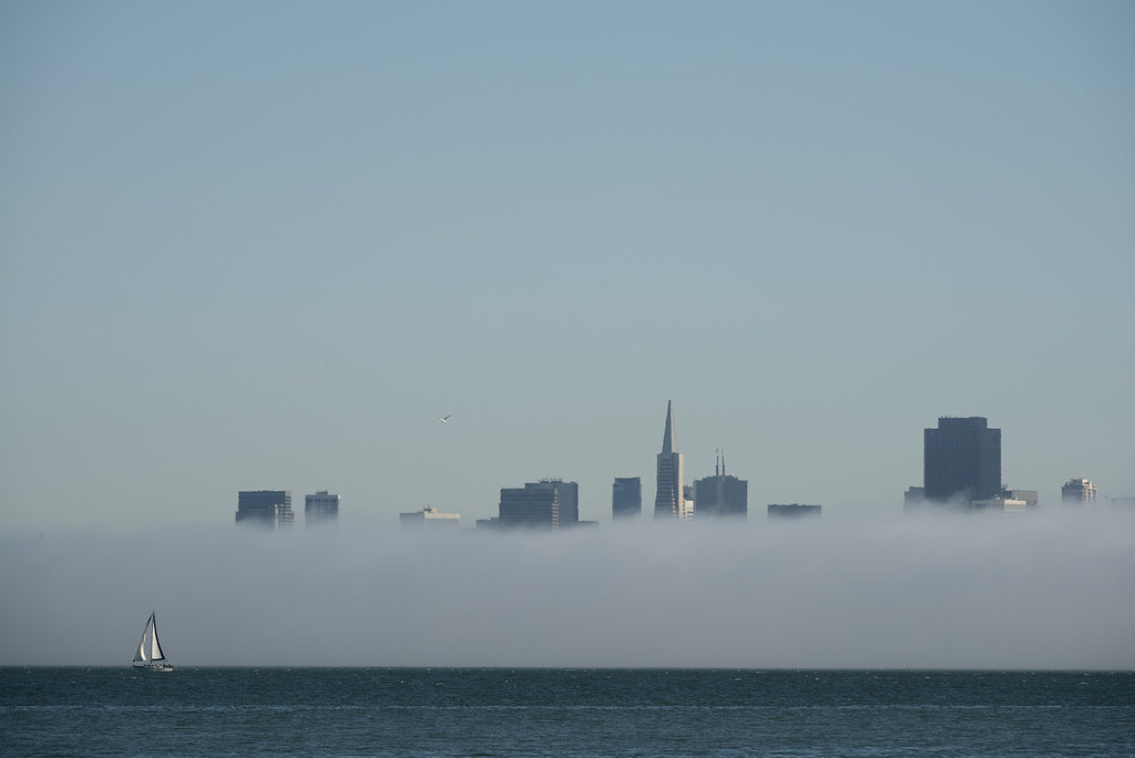 Boat, fog and San Francisco