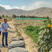 Assessing Agricultural Opportunities by GlobalDevLab