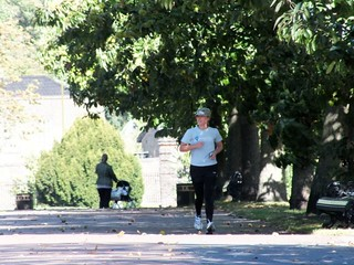 Greenwich Runner