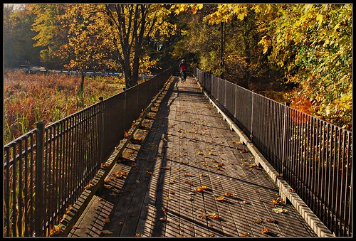 morning sun fall sunrise automne soleil ramp matin cycliste passerelle