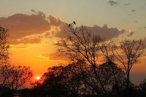 sky colour nature birds dawn holidays urunga