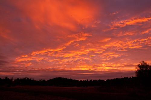 sunrise champoeg tamronaf1750mmf28xrdiiild