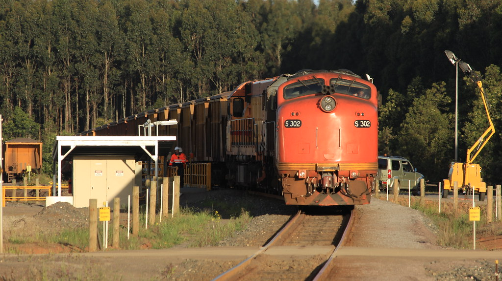 S302 T386 and L277 bask in the late afternoon Spring sunshine at Ilkua by bukk05