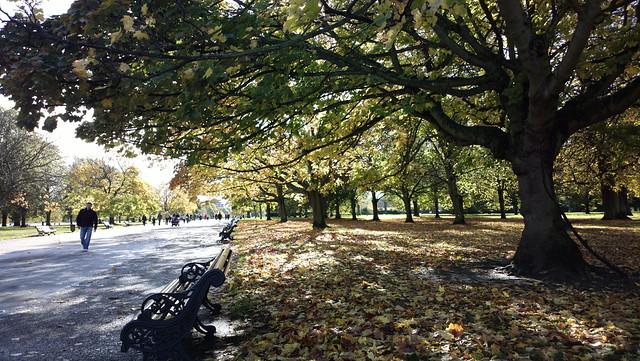 The First of November in Kensington Gardens