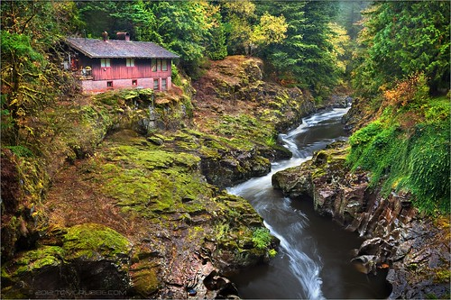 autumn house fall rain creek forest river landscape washington washingtonstate lewisriver