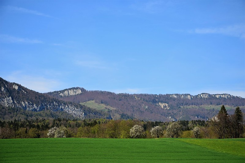Feldbrunnen surroundings 18.04 (3)