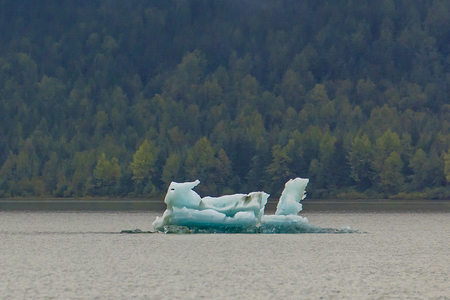 Juneau Blue Iceberg