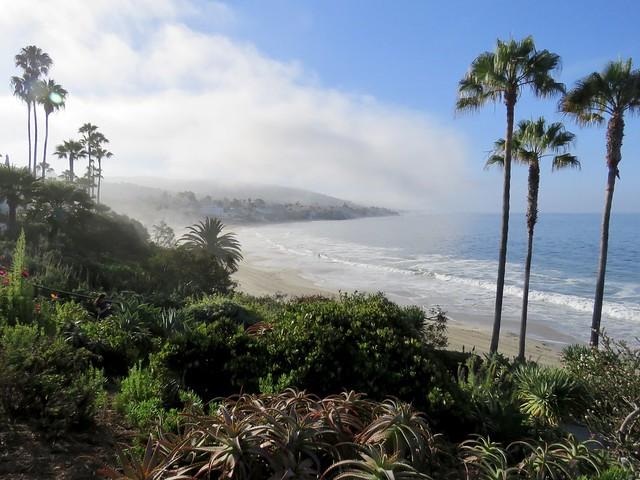 Laguna Beach, 8:00 a.m.