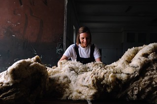 sorting and grading wool | by Rosa Pomar