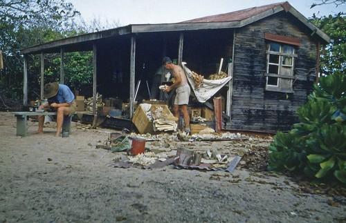 queensland statelibraryofqueensland islands lowisland shack scientificexpedition scientists greatbarrierreef