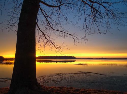 reflection lake sunset aluksne latvia saulriets vidzeme silhouette